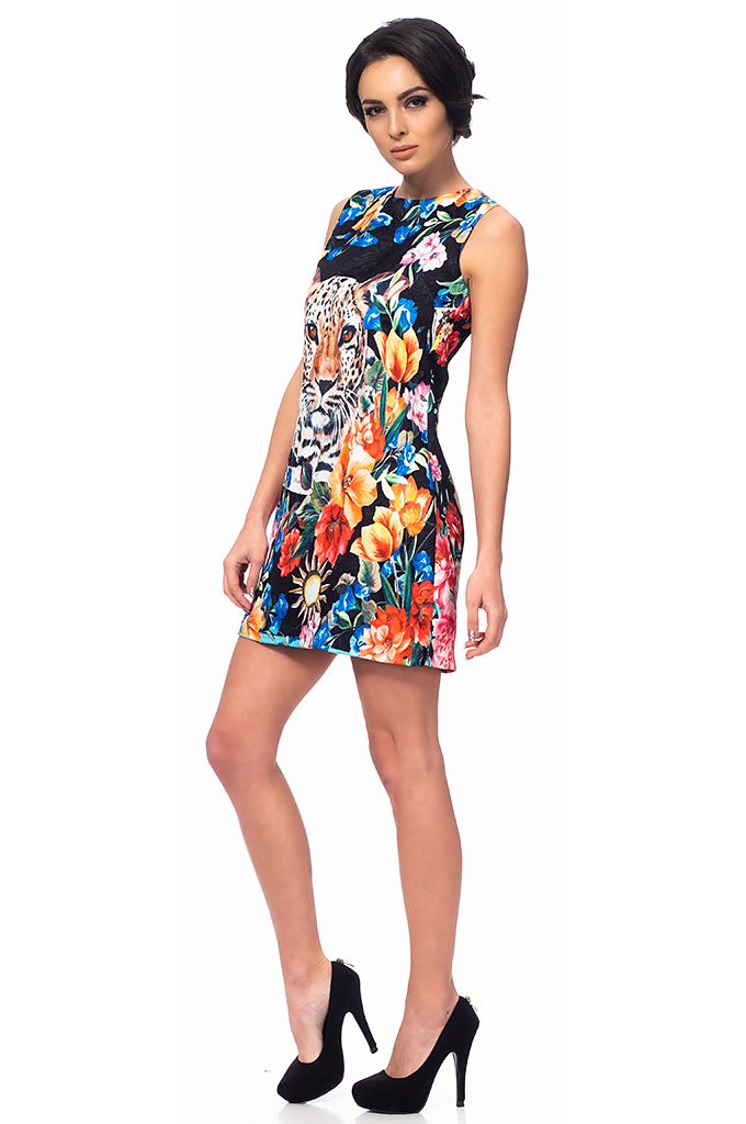 Ladies dress with print
